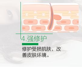 第四步:强修护:修护受损肌肤,改进皮肤环境